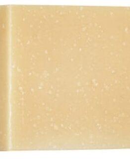 christophe-robin-aloe-vera-hydrating-shampoo-bar-100g1