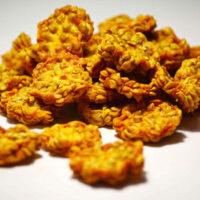 Figues de barbarie Bio en rondelles orange